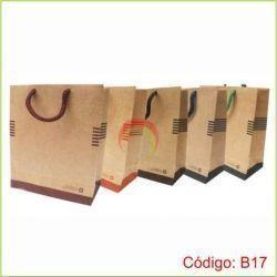 Bolsa Ecologica de Papel 17x13x6